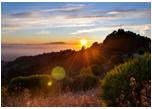 HEARTraining, Berkeley, CA