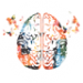 Clinical Mindfulness Steve Hoskinson